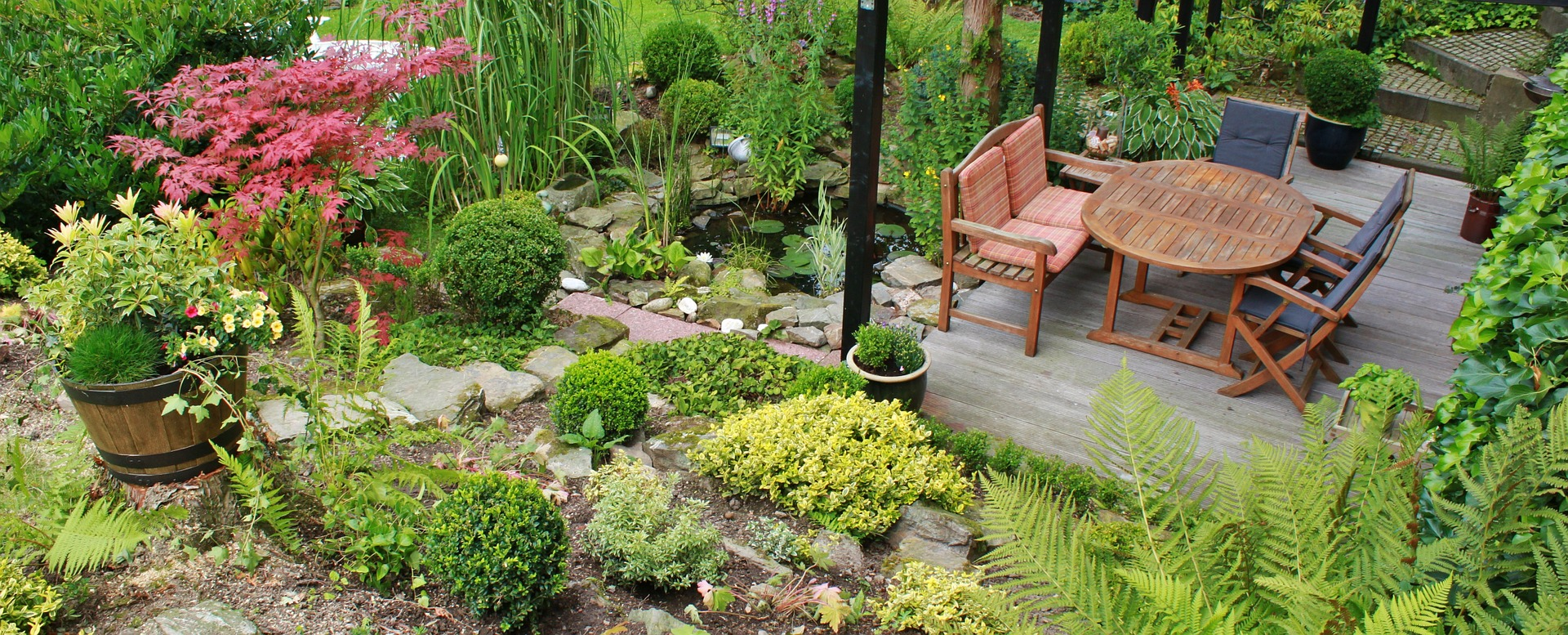 Planning Your Garden for 2019 | Morris's of Usk on tumblr flowers, art garden design, blog garden design, tumblr trees, four square garden design, google garden design, tumblr travel, tumblr bathrooms, home garden design, food garden design, tumblr sport fishing, tumblr wood, pinterest garden design, houzz garden design, tumblr sculpture,